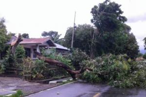 Cuaca Buruk, PLN Terus Siaga Bencana di NTT